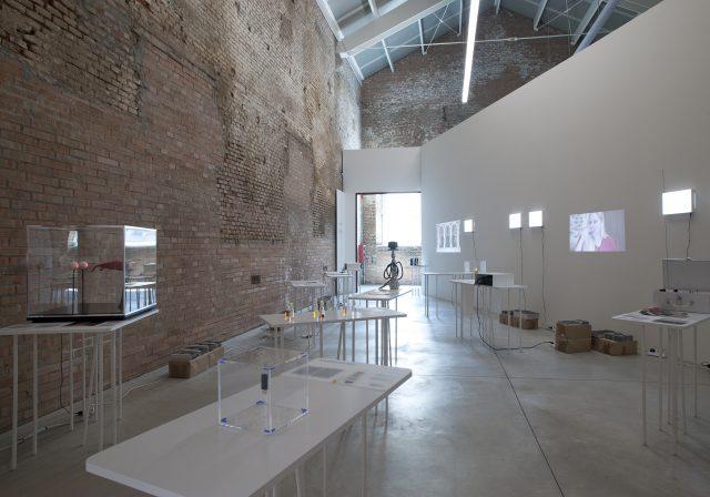 Speculative exhibition